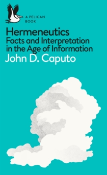 Hermeneutics : Facts and Interpretation in the Age of Information, Paperback / softback Book
