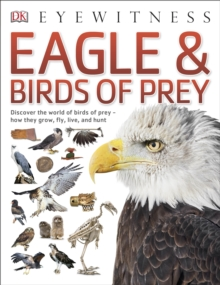 Eagle & Birds of Prey, Paperback Book