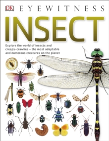 Insect : Explore the world of insects and creepy-crawlies - the most adaptable and numerous creatures on the planet, Paperback / softback Book