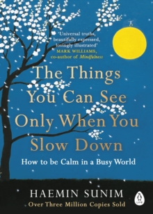The Things You Can See Only When You Slow Down : How to be Calm in a Busy World, Paperback / softback Book