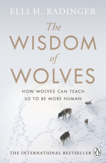 The Wisdom of Wolves : How Wolves Can Teach Us To Be More Human, Paperback / softback Book