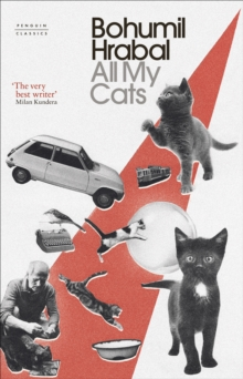 All My Cats, Hardback Book