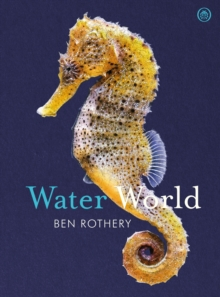 Water World, Hardback Book