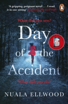 The Day of the Accident, Paperback / softback Book
