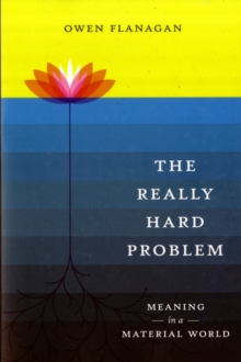 The Really Hard Problem : Meaning in a Material World, Paperback / softback Book