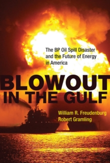Blowout in the Gulf : The BP Oil Spill Disaster and the Future of Energy in America, Paperback / softback Book