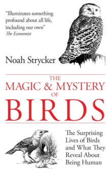 The Magic and Mystery of Birds : The Surprising Lives of Birds and What They Reveal About Being Human, Paperback / softback Book