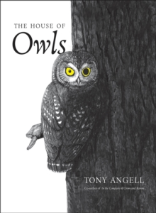 The House of Owls, EPUB eBook