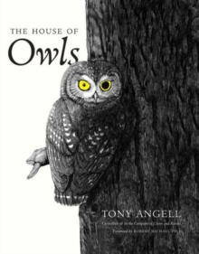 The House of Owls, Paperback / softback Book
