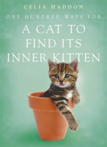 One Hundred Ways for a Cat to Find Its Inner Kitten, Paperback Book