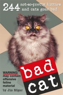 Bad Cat, Paperback Book