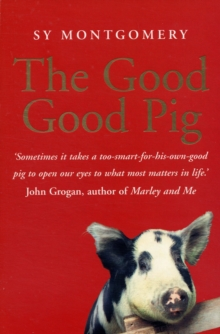 The Good Good Pig, Paperback / softback Book