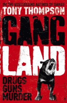 Gang Land : From footsoldiers to kingpins, the search for Mr Big, Paperback Book