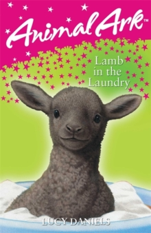 Lamb in the Laundry, Paperback Book