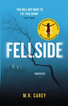Fellside, Paperback Book