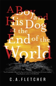 A Boy and his Dog at the End of the World, Hardback Book