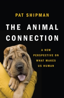 The Animal Connection : A New Perspective on What Makes Us Human, Hardback Book