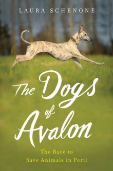 The Dogs of Avalon : The Race to Save Animals in Peril, Hardback Book