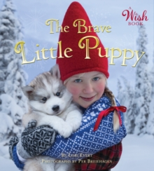 The Brave Little Puppy (A Wish Book), Board book Book