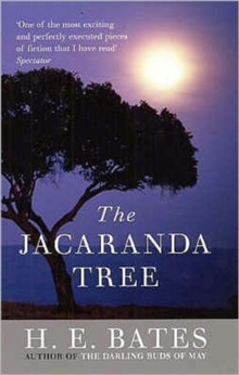 The Jacaranda Tree, Paperback Book