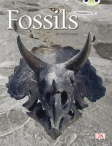 BC NF Gold A/2B Fossils, Paperback Book