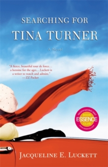 Searching for Tina Turner, Paperback Book
