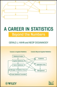 A Career in Statistics : Beyond the Numbers, Paperback / softback Book