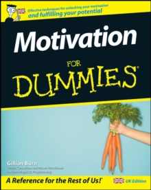 Motivation For Dummies, Paperback Book
