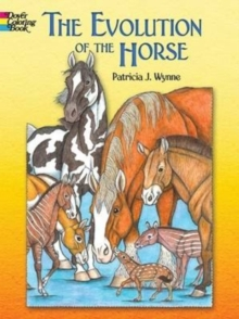The Evolution of the Horse, Paperback / softback Book