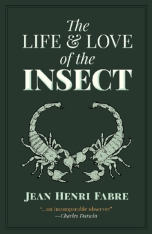 The Life and Love of the Insect, Paperback / softback Book