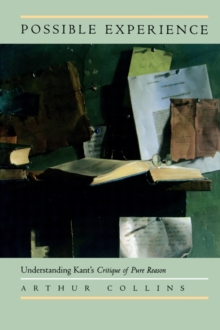 Possible Experience : Understanding Kant's Critique of Pure Reason, Paperback / softback Book