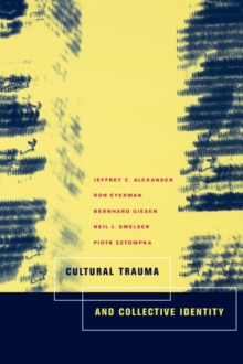 Cultural Trauma and Collective Identity, Paperback / softback Book