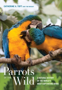 Parrots of the Wild : A Natural History of the World's Most Captivating Birds, Hardback Book