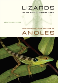 Lizards in an Evolutionary Tree : Ecology and Adaptive Radiation of Anoles, Paperback / softback Book