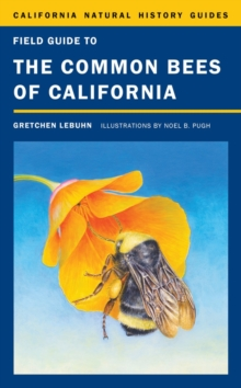 Field Guide to the Common Bees of California : Including Bees of the Western United States, Paperback / softback Book