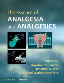 The Essence of Analgesia and Analgesics, Paperback / softback Book