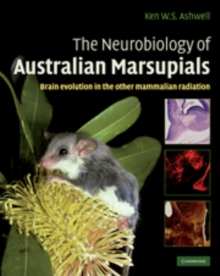 The Neurobiology of Australian Marsupials : Brain Evolution in the Other Mammalian Radiation, Hardback Book