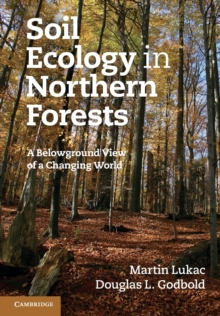 Soil Ecology in Northern Forests : A Belowground View of a Changing World, Paperback / softback Book
