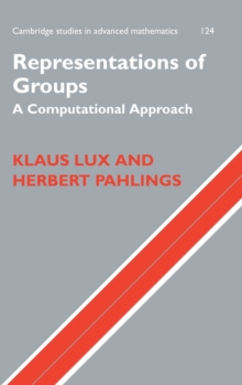 Representations of Groups : A Computational Approach, Hardback Book