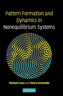 Pattern Formation and Dynamics in Nonequilibrium Systems, Hardback Book