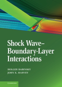 Shock Wave-Boundary-Layer Interactions, Hardback Book