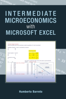 Intermediate Microeconomics with Microsoft Excel, Hardback Book