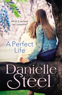 A Perfect Life, Paperback / softback Book