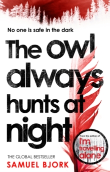 The Owl Always Hunts at Night : (Munch and Kruger Book 2), Paperback / softback Book