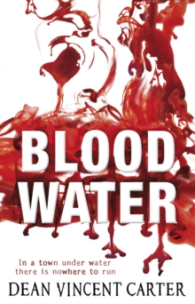 Blood Water, Paperback / softback Book