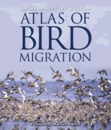 Natural History Museum Atlas of Bird Migration : Tracing the Great Journeys of the World's Birds, Hardback Book