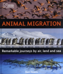 Animal Migration : Remarkable Journeys by Air, Land and Sea, Hardback Book