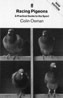 Racing Pigeons : A Practical Guide to the Sport, Paperback Book