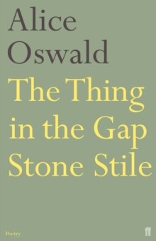 The Thing in the Gap Stone Stile, Paperback Book