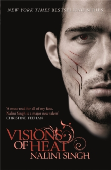 Visions of Heat : Book 2, Paperback Book
